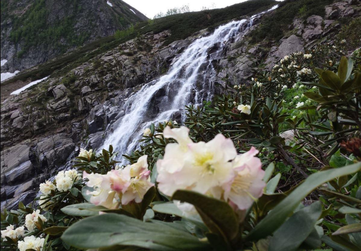 medvezhyi-vodopad-dolina-rododendronov